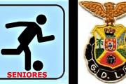 FUTEBOL: Desportivo L. Marques (GDLM) novas fotos do escalão de seniores