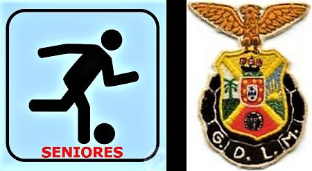 FT Desportivo LM - Seniores