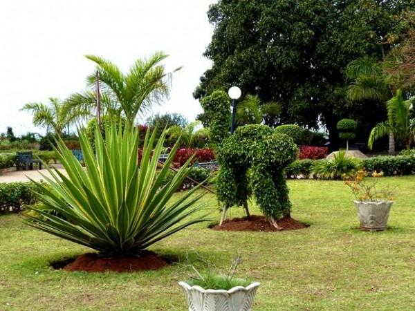 Jardim_dos_Namorados