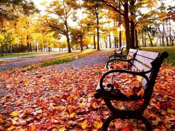 outono big