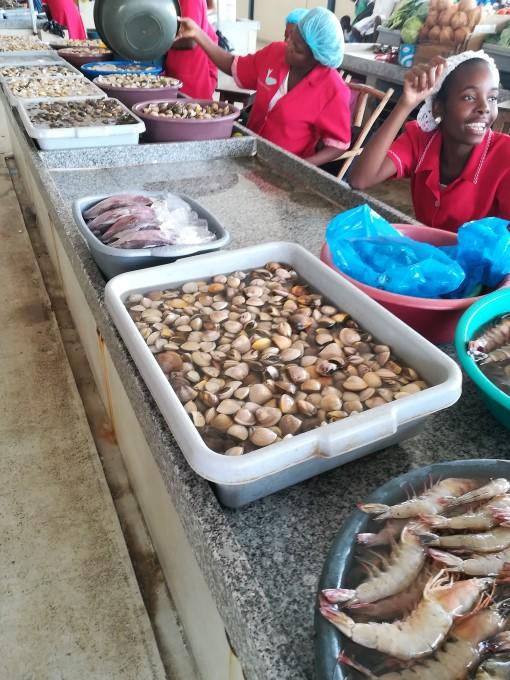 Bancas do mercado do peixe