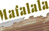 """Os Chãos Da Mafalala - """"Da Planície e da Savana"""" de Pierre Vilbró"""