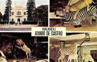 UMA DATA NA HISTÓRIA – 6 de Junho de 1913... Museu Álvaro de Castro -