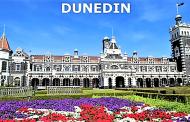 Relatos de uma viagem por terras do Oriente (8) – Chegada a Dunedin e despedida da Nova Zelândia