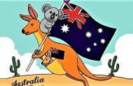 Relatos de uma viagem por terras do Oriente (10) - Últimos dias na terra dos koalas e cangurus...